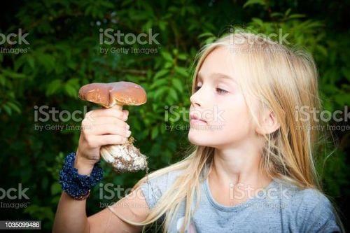 菇類是維生素D含量最多的!